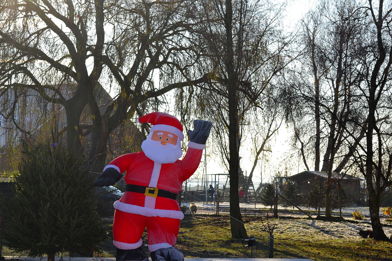 Nordmann Excellent kerstbomen Uithoorn