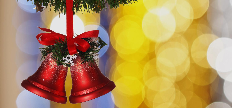 Veelgestelde vragen over Nordmann Excellent kerstbomen in Uithoorn